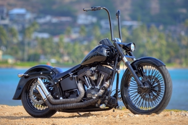 Softail Entries