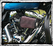 Twin Cam Model Air Cleaner Systems 636v