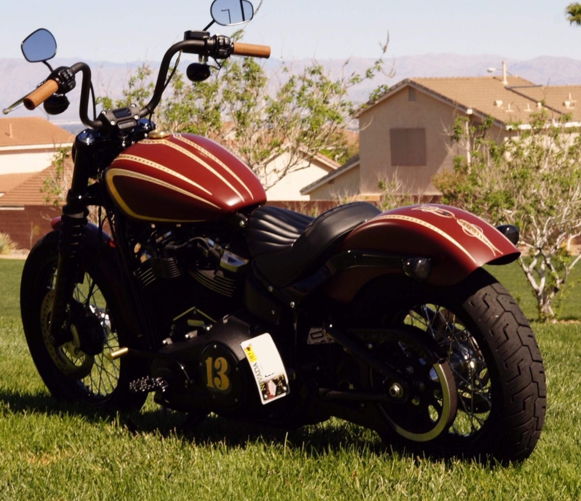 DK Custom License Plate Light  Mount Tail Light Harley Sportster Dyna Softail left OR right side