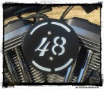 Forty Eight 3-D Flake Complete HiFlow 587 Air Cleaner Sportster Sportster Harley Davidson High Flow Air cleaner DK Custom Nightster Iron 48 Custom Low SuperLow Stage I K&N EFI Carbureted Complete High Performance Intake